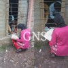 Video, photographs show mass copying 10th class examination in Reasi