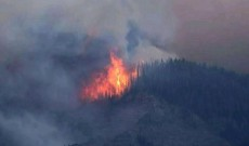 Fire broke out in Sopore forest