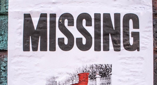 Two BSF constables go missing in Rajouri
