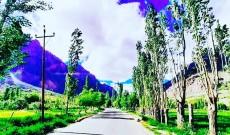 Tourism Adventure in Kargil Suru Valley Ladakh