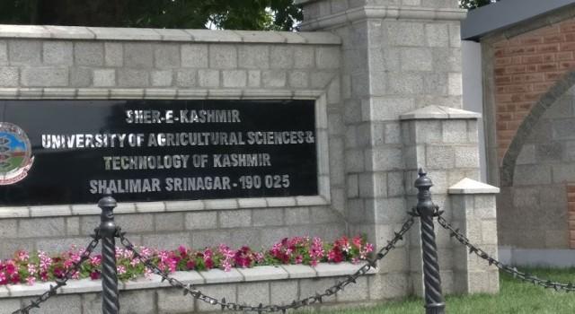 'Callousness' towards scientists: SKUAST-Kashmir begins week-long protest strike
