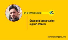 Green gold conservation; a grave concern