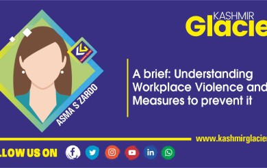 A brief: Understanding Workplace Violence and Measures to prevent it