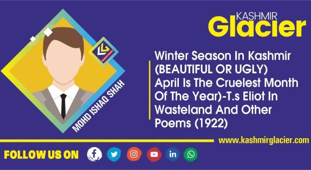 Winter Season In Kashmir (Beautiful Or Ugly)